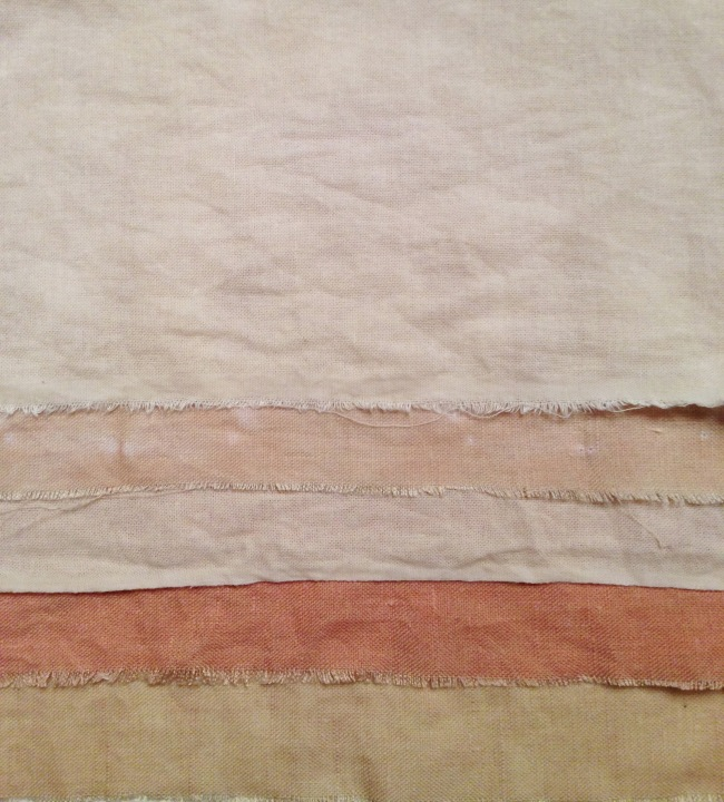 mangosteen skin dyed