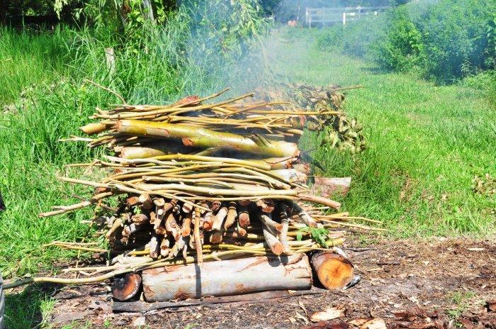 burning eucalyptus
